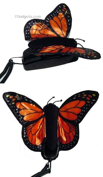 butterflycorded.jpg