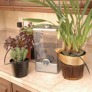 Compact Plant Watering System