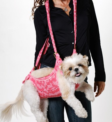 carry your pet.