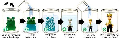Frog to Prince