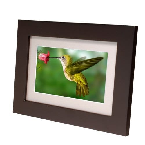 Digital Picture Wood Frame with Beige Matting