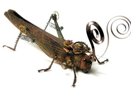 grasshopperp108