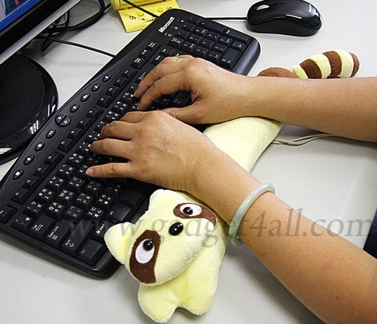 Raccoon USB Heating Wrist Cushion