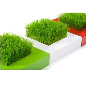 Haute Culture Chlorophylle Mini Garden