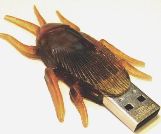 Cockroach USB Flash Drive
