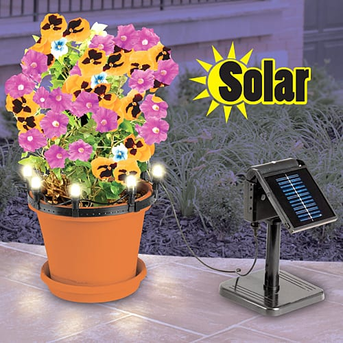 "Solar plant ""Up Lights"""