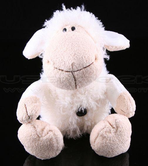 sheepusbcam1