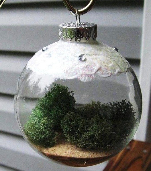 Living Ornament for Your Tree,