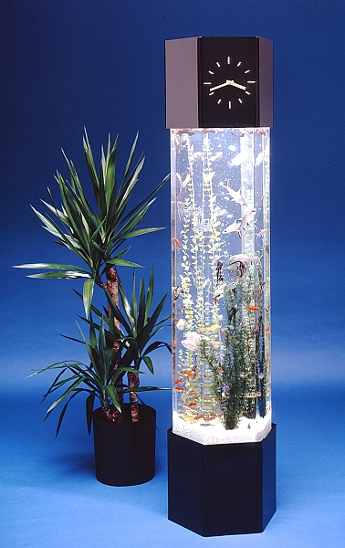 Vertical Fish Tank