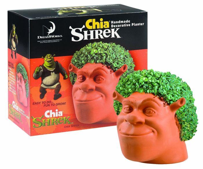 Shrek Handmade Decorative Planter