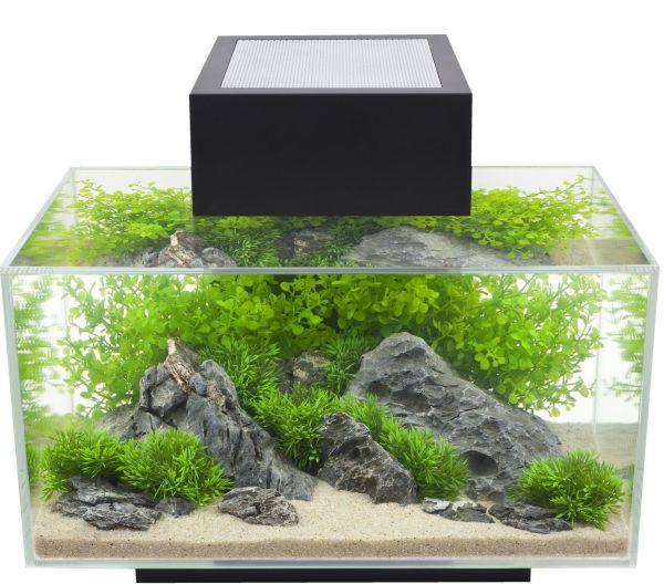 Fluval Edge, 6 gallon Aquarium with 21-LED Light