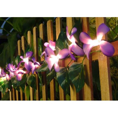 Purple Frangipani Flower Party String Lights