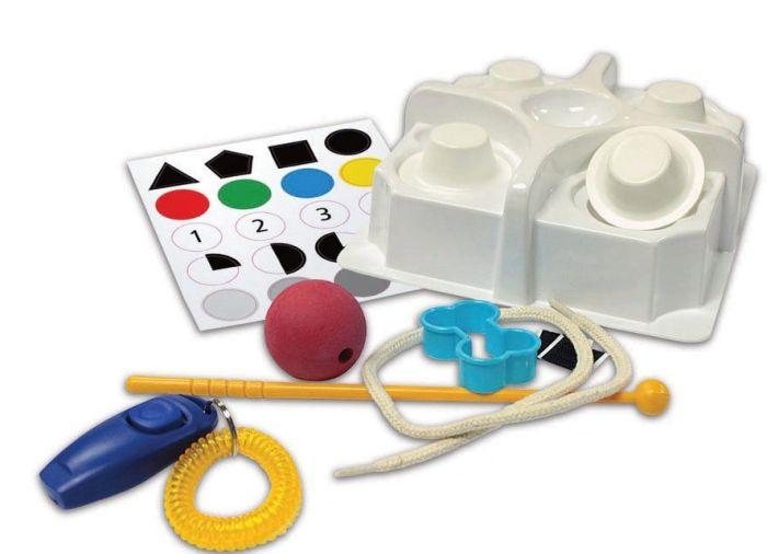 Dog School Pet Science Kit by Wild!