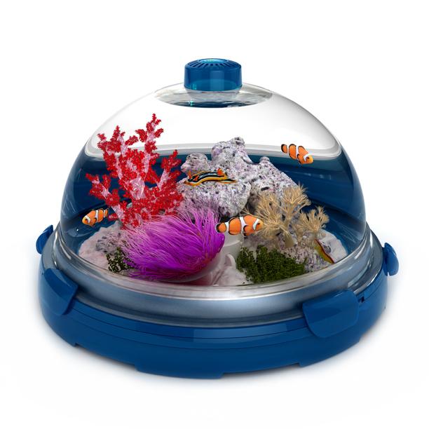 BioBubble Premium Plus Pet Bluerium