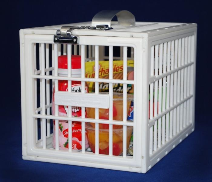 The Original Fridge Locker