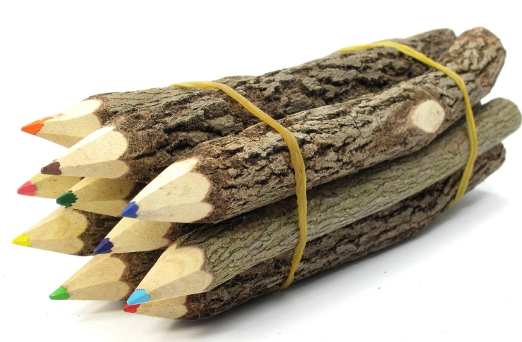 Amazon.com  Branch & Twig Assorted Colored Pencils, 10-Pack, Approximately 5'L - MAIN