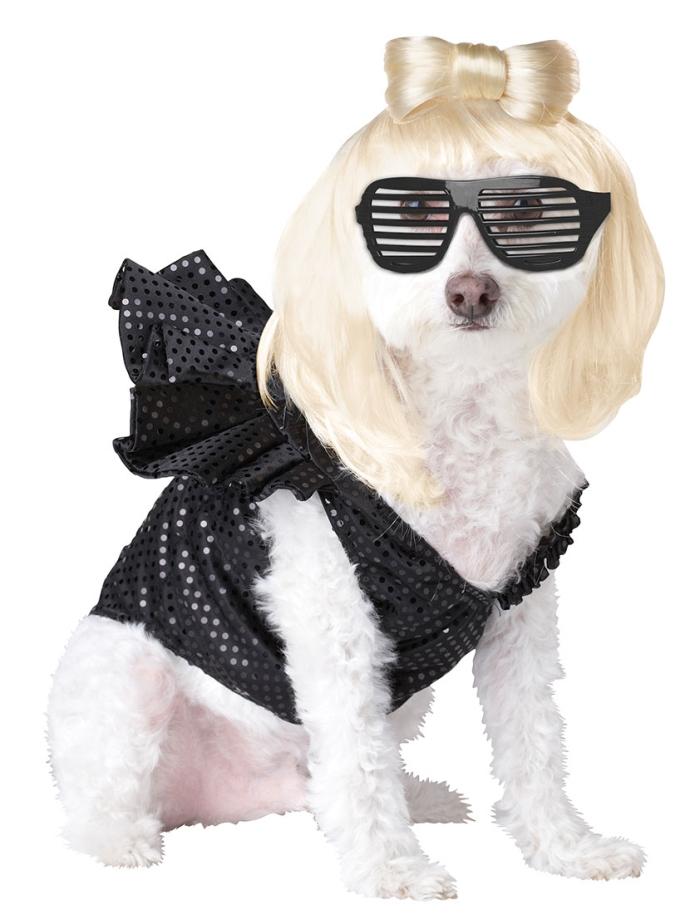 PET20111-Lady-Dogga-Dog-Costume-large