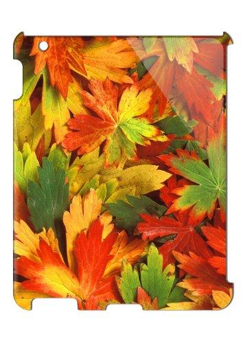 Apple iPad (2nd 3rd 4th Gen) Case - Ultra Slim Version - Autumn Leaves