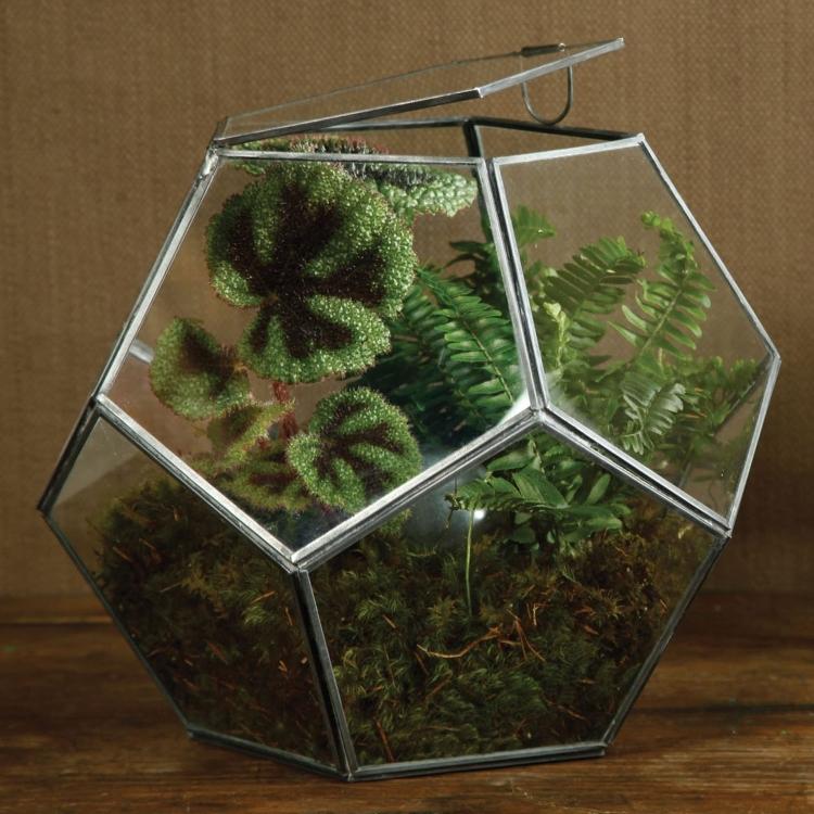 Pierre Faceted Glass Terrarium