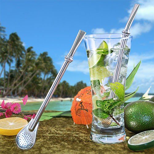 Stainless Steel Cocktail Straw with Filter