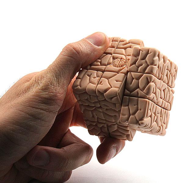 brain cube inuse