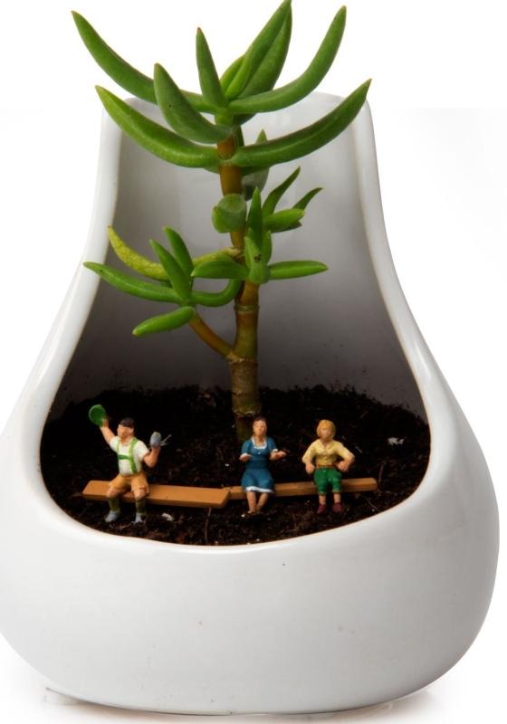 Ceramic Terrarium