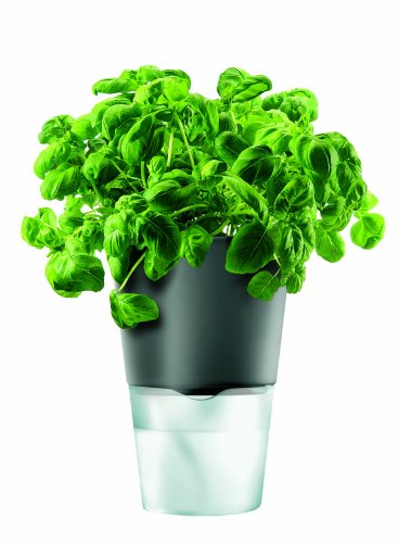 Eva Solo Herb Pot, Self-Watering