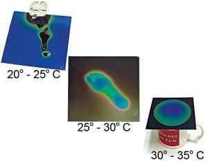 Liquid Crystal Sheet