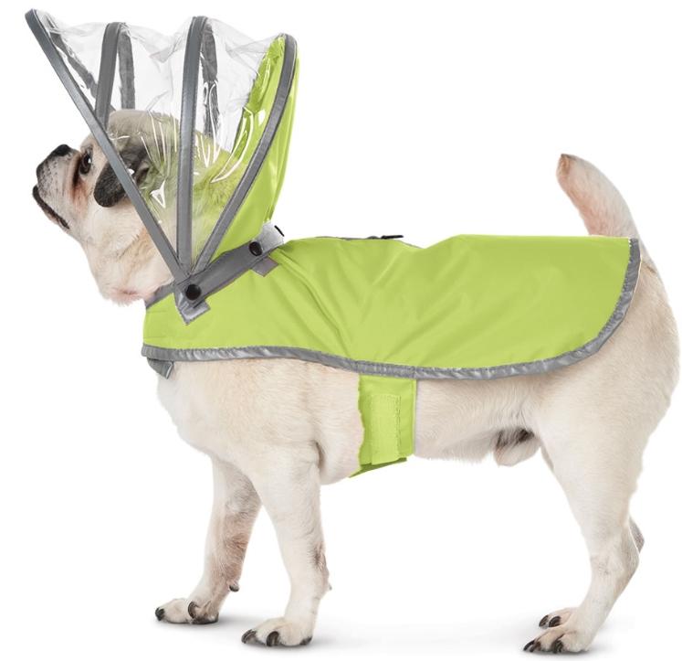 The Canines Raincoat