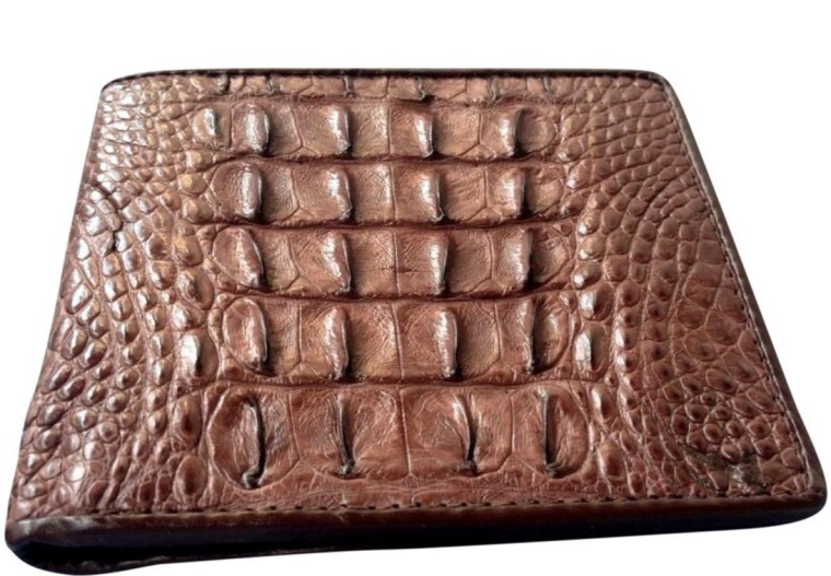 Caiman Crocodile Skin Hornback Bifold Wallet Brown