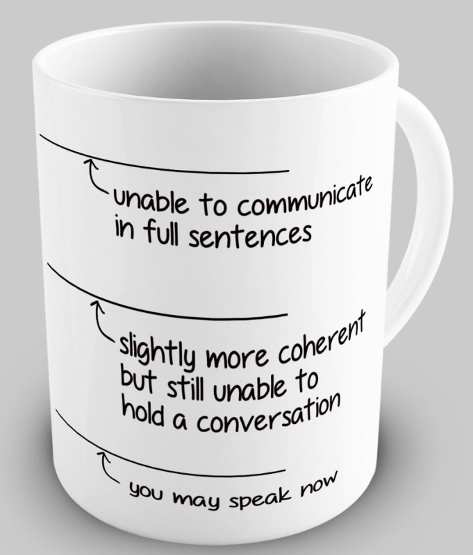 Funny You May Speak Now Coffee Mug