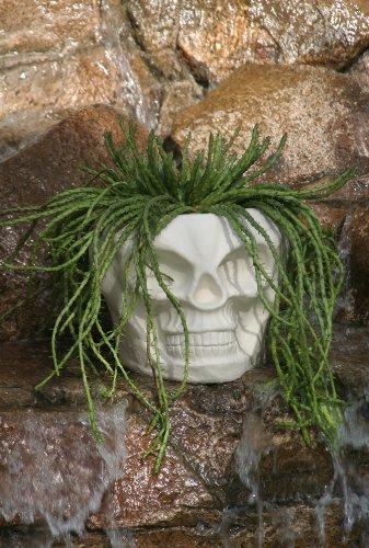 Skull Tiki Planter