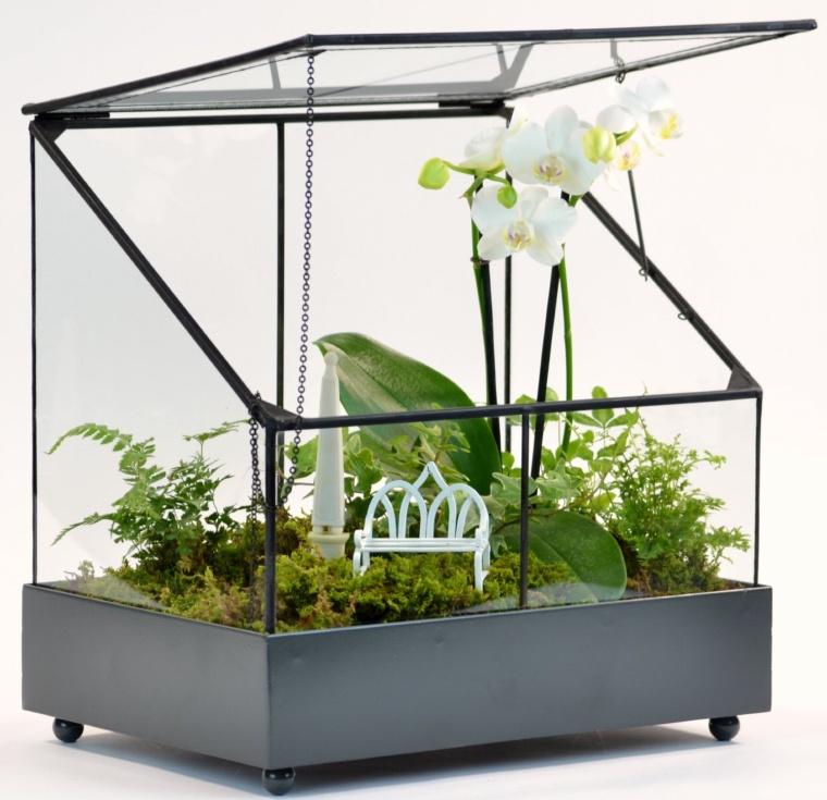 Terrarium-fairy Garden Display Case