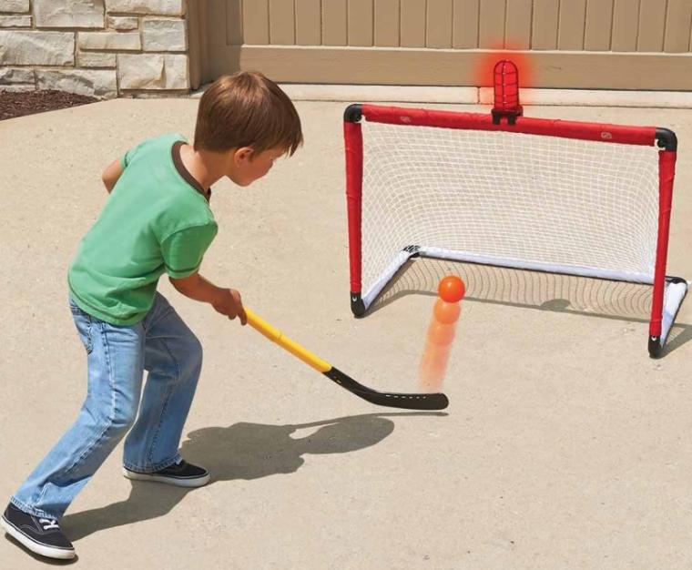 The Light And Horn Hockey Net