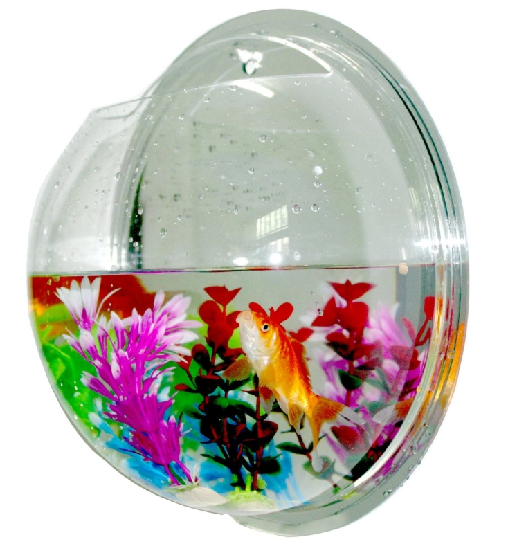 Fish Bowls Mount Bubble Aquarium Acrylic Fish Tank