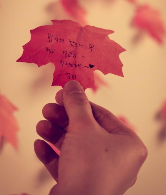 Leaf_ Maple Sticky Notes