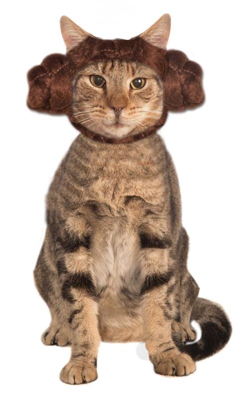 Leia Cat Costume