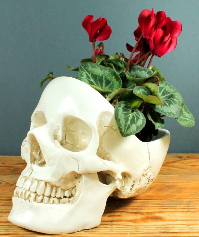 Skull Design Desk and Room Tidy