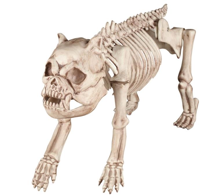 the Hungry Hound Skeleton Dog Standard