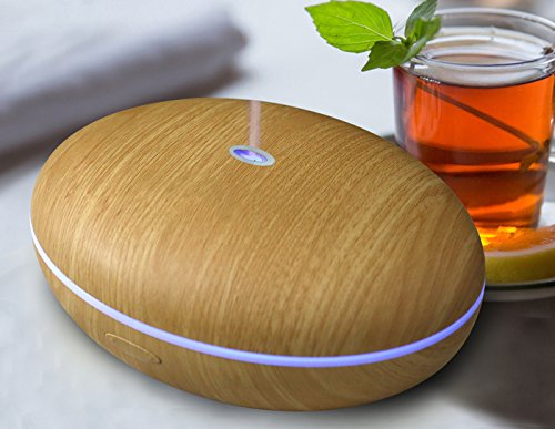 Best Premium Essential Oil Diffuser