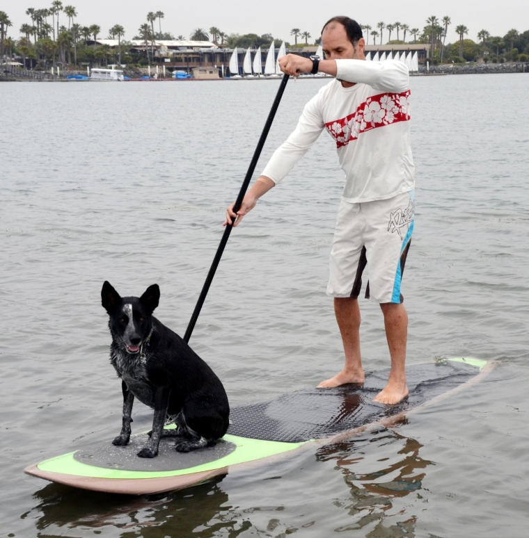 Traction Pad for Dogs Stand Up Paddleboard Deck Padding