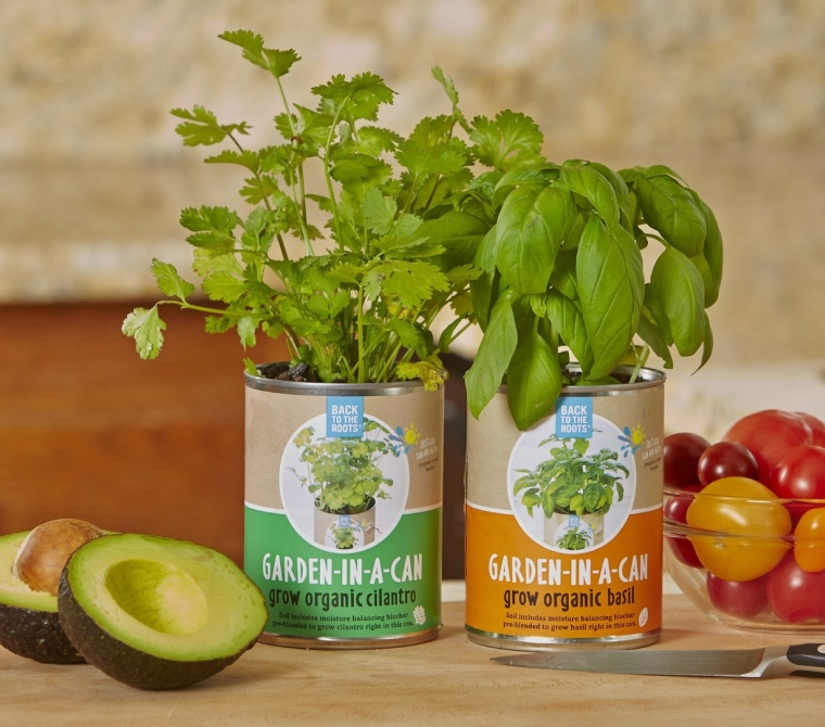 Back to the Roots Garden-in-a-Can, Grow Organic Basil