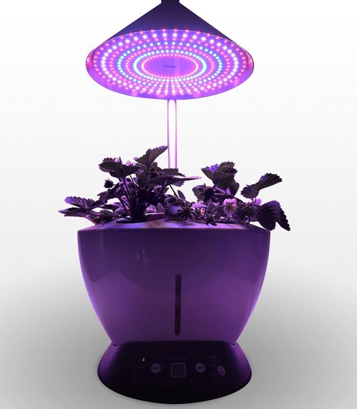 LED Indoor Hydroponics Garden Herb Auto Growing Kit