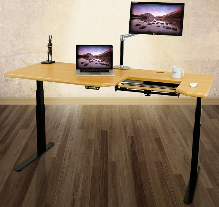 Omega EVEREST Electric Adjustable Height Standing Desk