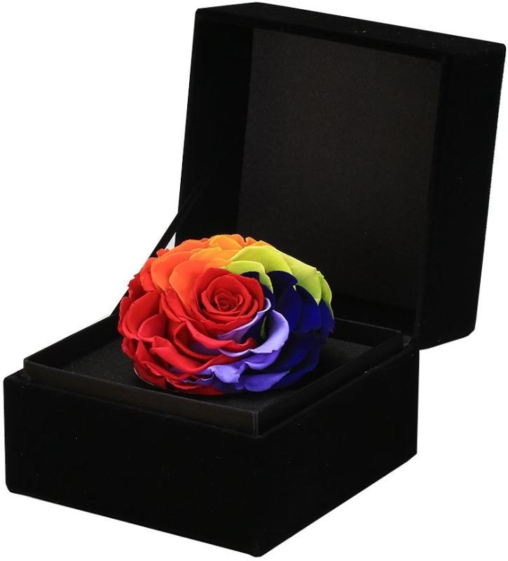 Preserved Fresh Flower Rose Gift Box Rainbow Rose