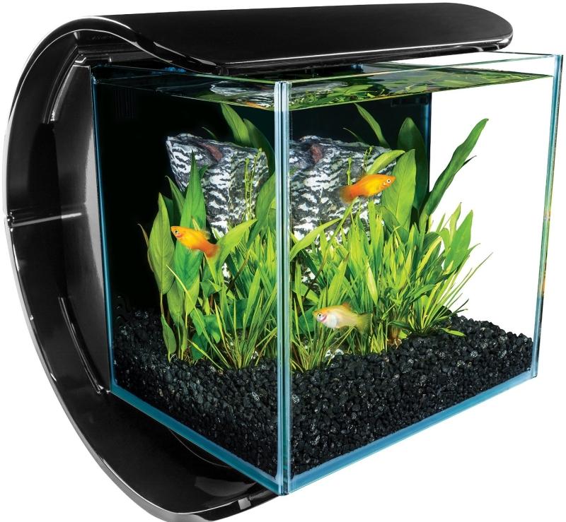 Silhouette Square Glass Aquarium Kit