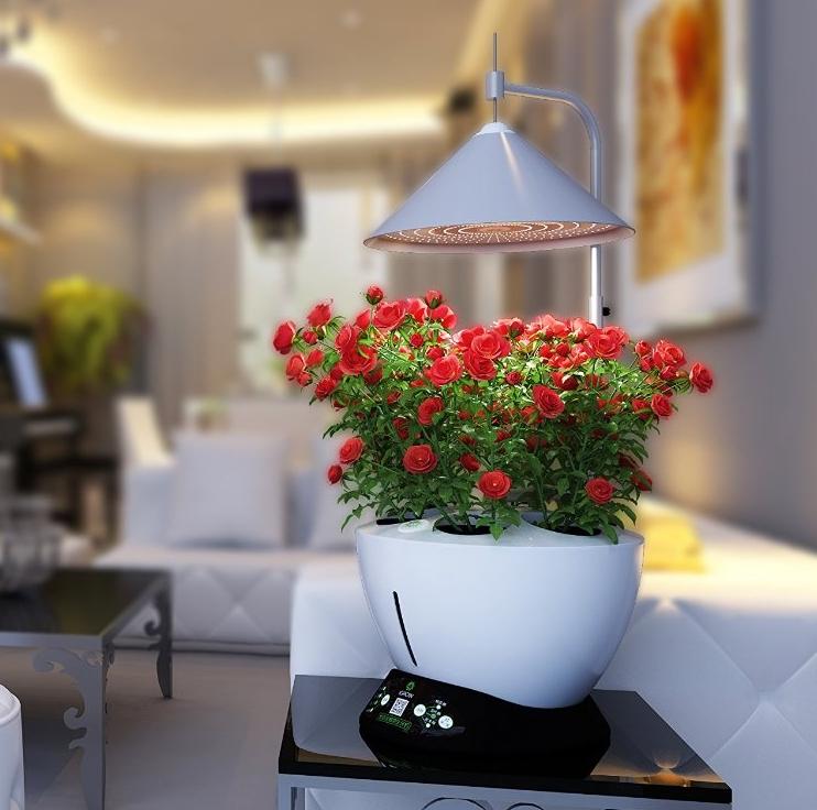 iGrow LED Indoor Hydroponics Garden Herb Auto Growing Kit