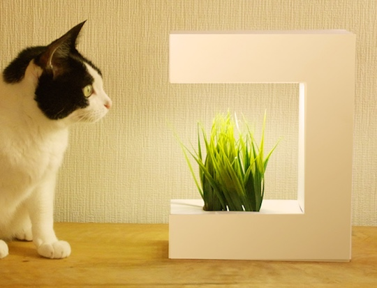 hydroponic-grower-plant-unit-akarina-14-1