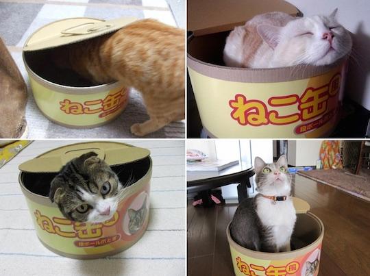 cat-can-scratcher-pet-house-2