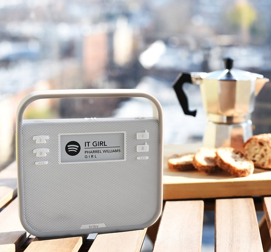 Alexa-Enabled Portable Speaker,